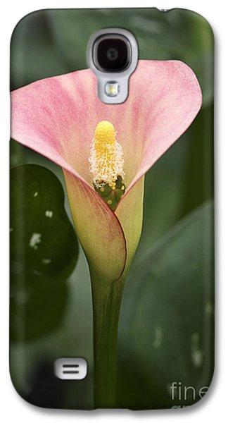 Calla Lilly Galaxy S4 Cases - Calla In The Mist Galaxy S4 Case by Deborah Benoit