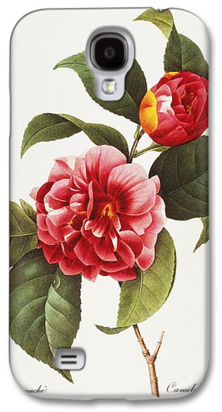 1833 Galaxy S4 Cases - Camellia, 1833 Galaxy S4 Case by Granger