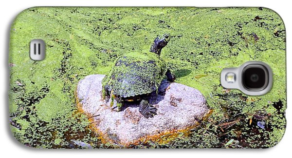 Alga Galaxy S4 Cases - Camouflage Turtle Galaxy S4 Case by Ed Weidman