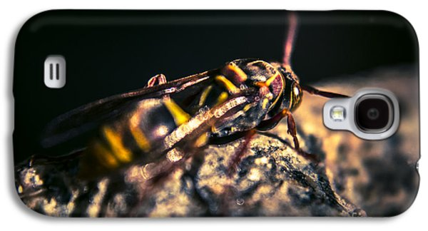 Camouflaged Killer Wasp Galaxy S4 Case by Jorgo Photography - Wall Art Gallery