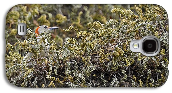 Camouflaged Red-bellied Woodpecker Galaxy S4 Case by Carolyn Marshall