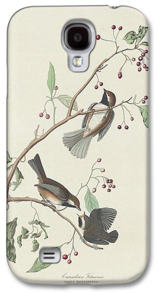 Canadian Titmouse Galaxy S4 Case by John James Audubon