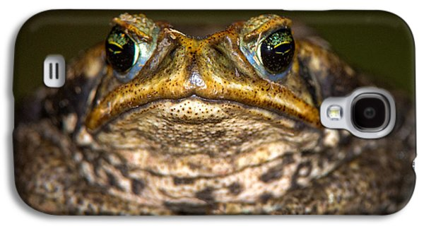 Cane Toad Rhinella Marina, Pantanal Galaxy S4 Case by Panoramic Images