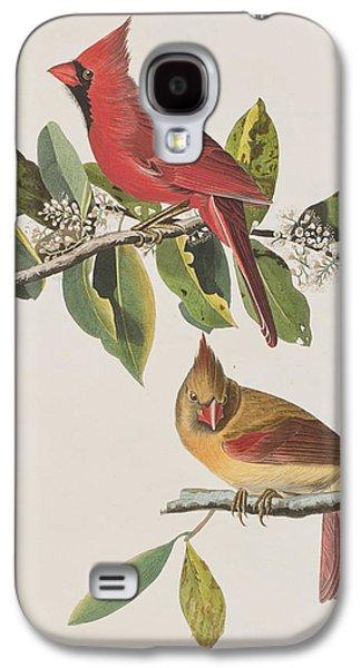 Leaf Drawings Galaxy S4 Cases - Cardinal Grosbeak Galaxy S4 Case by John James Audubon