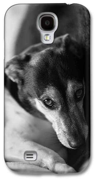 Cared For Galaxy S4 Case by Mike Reid