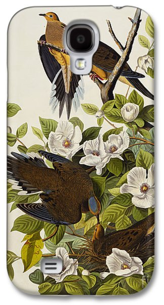 Carolina Turtledove Galaxy S4 Case by John James Audubon