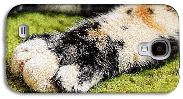 Digital Galaxy S4 Cases - Cat leg Galaxy S4 Case by Queso Espinosa