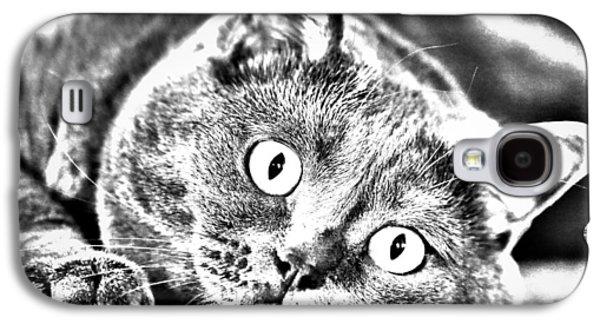 Cats Pyrography Galaxy S4 Cases - Katrin Galaxy S4 Case by Olga Photography