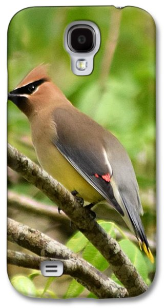 Cedar Wax Wing 1 Galaxy S4 Case by Sheri McLeroy