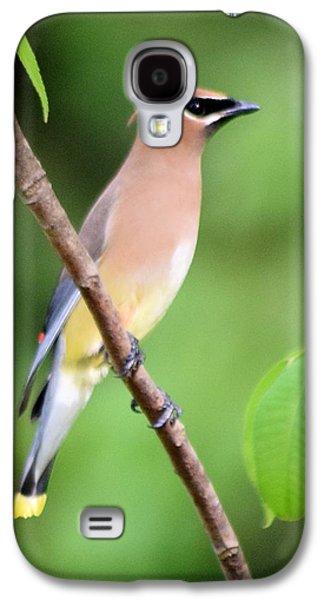 Cedar Wax Wing Profile Galaxy S4 Case by Sheri McLeroy