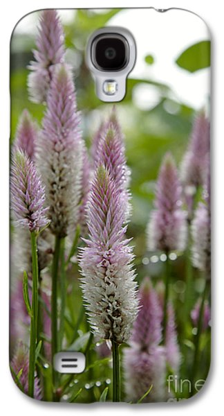 Prescott Photographs Galaxy S4 Cases - Celosia spicata...Pink Flamingo Galaxy S4 Case by Erin Paul Donovan