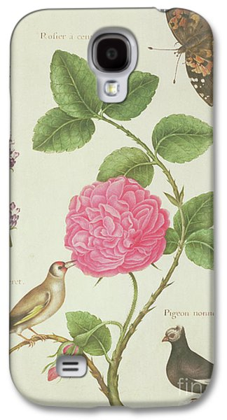 Centifolia Rose, Lavender, Tortoiseshell Butterfly, Goldfinch And Crested Pigeon Galaxy S4 Case by Nicolas Robert
