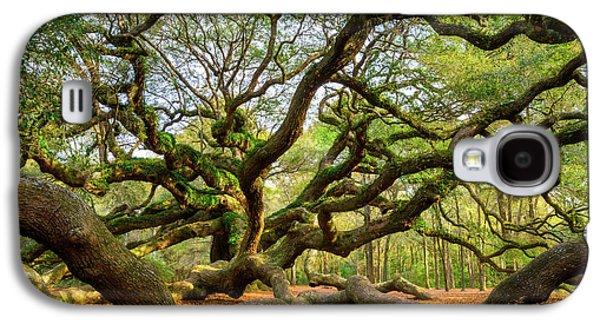 Ancient Galaxy S4 Cases - Charleston SC Angel Oak Tree South Carolina Landscape Galaxy S4 Case by Dave Allen