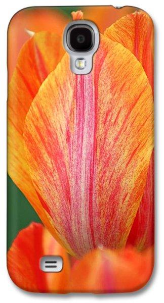 Cheekwood Galaxy S4 Cases - Cheekwood Tulip Galaxy S4 Case by Gayle Miller