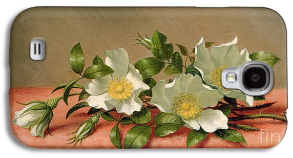 Cutting Galaxy S4 Cases - Cherokee Roses Galaxy S4 Case by Martin Johnson Heade
