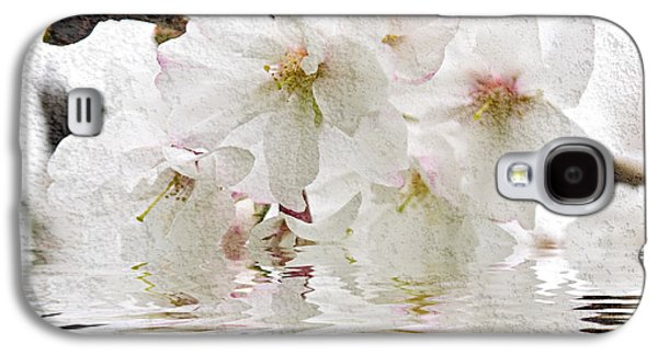 Blossoms Galaxy S4 Cases - Cherry blossom in water Galaxy S4 Case by Elena Elisseeva