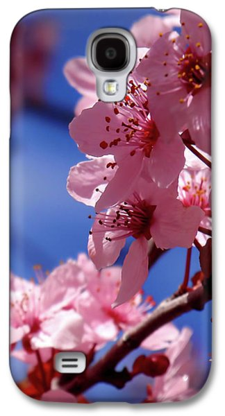 Cherry Blossom Galaxy S4 Case by Rona Black