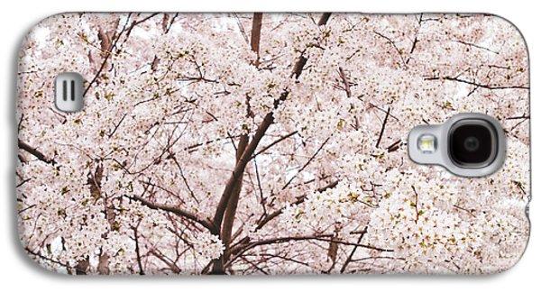 Cherry Blossoms Galaxy S4 Cases - Cherry Blossom Spring Galaxy S4 Case by Ariane Moshayedi