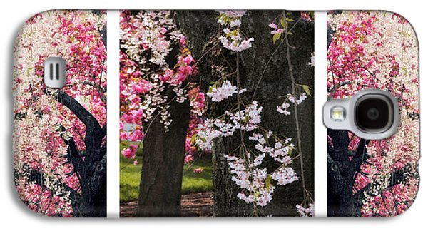 Cherry Blossoms Galaxy S4 Cases - Cherry Blossom Triptych Galaxy S4 Case by Jessica Jenney