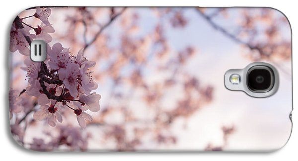Cherry Blossoms Galaxy S4 Cases - Cherry Blossoms Galaxy S4 Case by Ana V  Ramirez