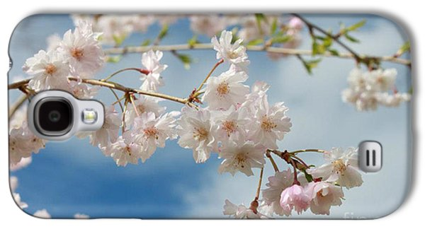 Cherry Blossoms Pyrography Galaxy S4 Cases - Cherry Blossoms Galaxy S4 Case by Brittany Meyn