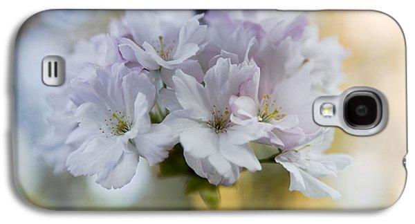 Cherry Blossoms Galaxy S4 Case by Frank Tschakert