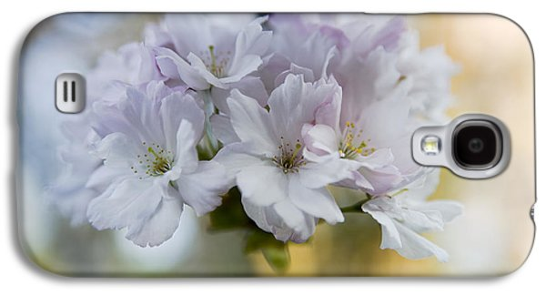 Cherry Blossoms Galaxy S4 Case by Frank Tschakert