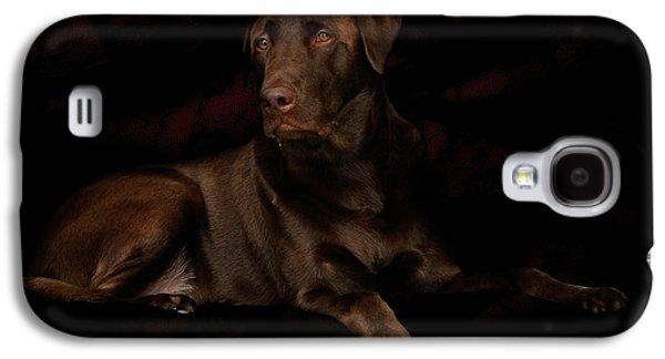 Chocolate Labrador Retriever Galaxy S4 Cases - Chocolate Lab Dog Galaxy S4 Case by Christine Till