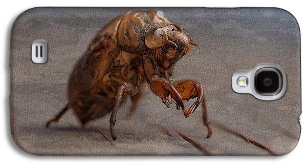 Cicada Shell Galaxy S4 Case by Tom Mc Nemar
