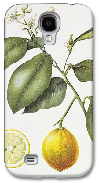 Citrus Bergamot Galaxy S4 Case by Margaret Ann Eden