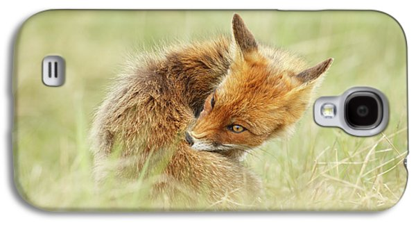 Clean Fox Galaxy S4 Case by Roeselien Raimond