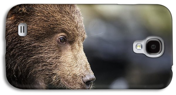 Close Focus Nature Scene Galaxy S4 Cases - Close-up Portrait Of Coastal Brown Bear Galaxy S4 Case by Paul Souders