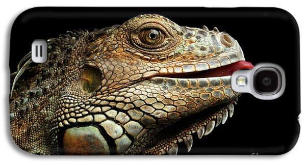 Close-upgreen Iguana Isolated On Black Background Galaxy S4 Case by Sergey Taran