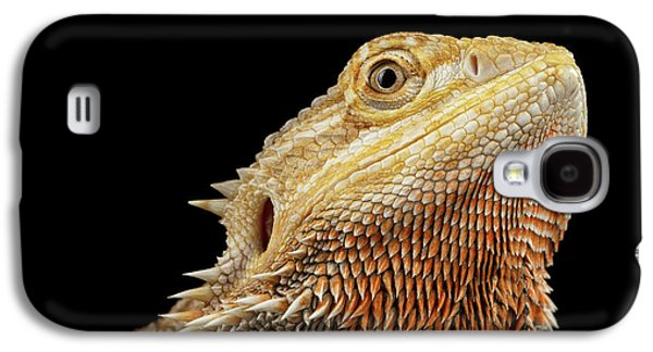 Closeup Head Of Bearded Dragon Llizard, Agama, Isolated Black Background Galaxy S4 Case by Sergey Taran