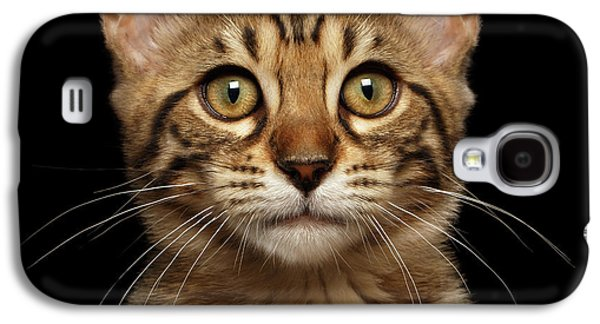 Closeup Portrait Of Bengal Kitty Isolated Black Background Galaxy S4 Case by Sergey Taran