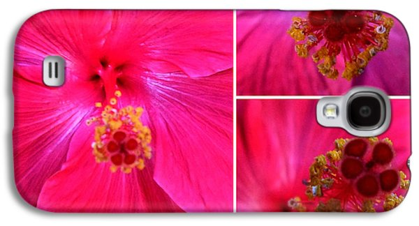 Althea Galaxy S4 Cases - Collage with Red Hibiscus  Galaxy S4 Case by Madalena Lobao-Tello