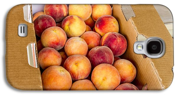 Locally Grown Galaxy S4 Cases - Colorado Peaches Ready for Market Galaxy S4 Case by Teri Virbickis