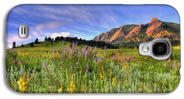 Western Photographs Galaxy S4 Cases - Colorado Wildflowers Galaxy S4 Case by Scott Mahon