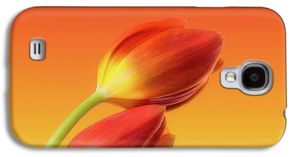 Colorful Tulips Galaxy S4 Case by Wim Lanclus