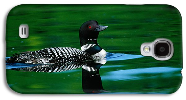Loon Galaxy S4 Cases - Common Loon In Water, Michigan, Usa Galaxy S4 Case by Panoramic Images