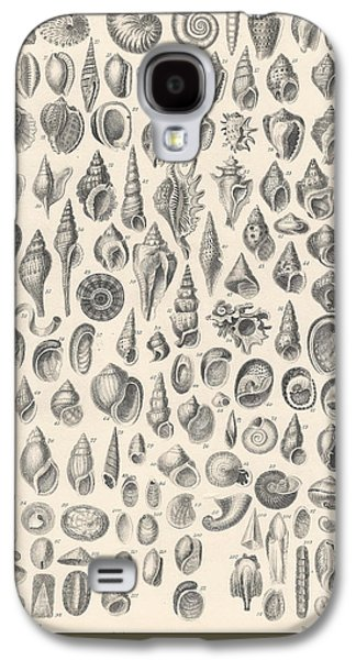 Botanical Galaxy S4 Cases - Conchology Galaxy S4 Case by Captn Brown