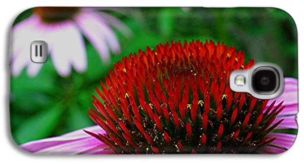 Coneflowers Galaxy S4 Case by Juergen Roth