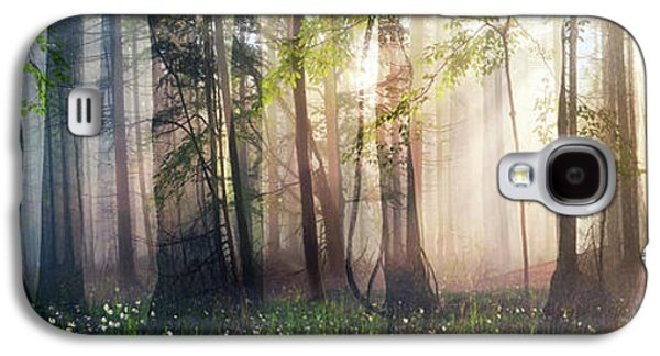 Constancy Galaxy S4 Case by Cynthia Decker