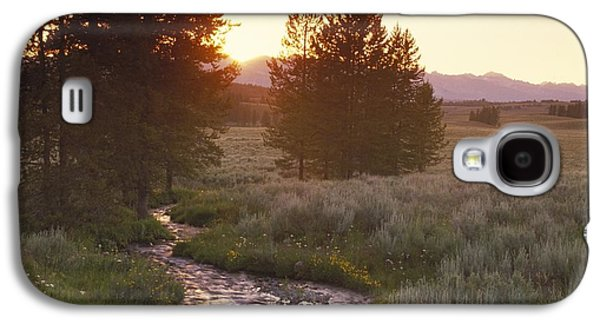 Landscapes Photographs Galaxy S4 Cases - Country Stream Running Between Two Trees Galaxy S4 Case by Gillham Studios