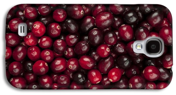Landmarks Photographs Galaxy S4 Cases - Cranberries Galaxy S4 Case by Elena Elisseeva