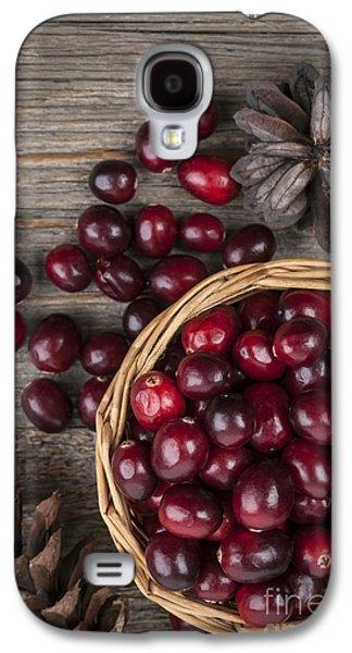 Cranberries In Basket Galaxy S4 Case by Elena Elisseeva