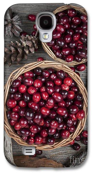 Cranberries In Baskets Galaxy S4 Case by Elena Elisseeva