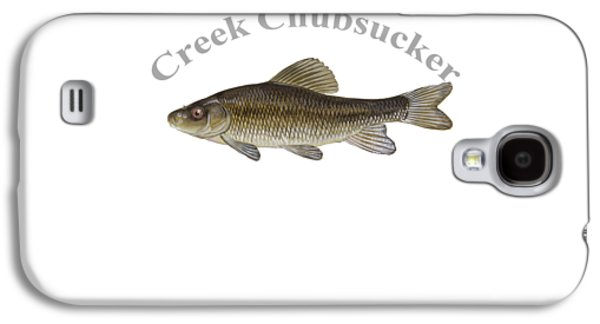 Gamefish Drawings Galaxy S4 Cases - Creek Chubsucker Fish by Dehner Galaxy S4 Case by T Shirts R Us -