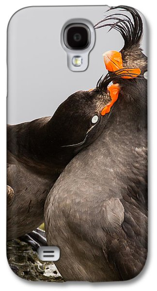 Crested Auklets Galaxy S4 Case by Sunil Gopalan