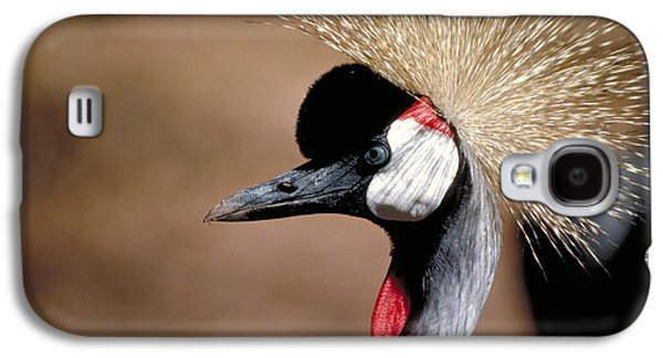 Birding Photographs Galaxy S4 Cases - Crested Crane Galaxy S4 Case by Carl Purcell